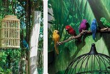 """Sommerdeko Trend 2016: """"Tropical Island"""" / Das Dschungelfieber greift um sich. Südseeblumen, Papageien, exotische Vögel und tropische Früchte entführen in eine Paradieswelt. Ein bisschen sommerliches Urlaubsfeeling tut gut, lässt vom Alltag abschalten und entspannen. Exotische und naturverbundene Farben wie saftiges Grün, Khaki, Korallenrot und Moosgrün unterstreichen diesen Naturlook und lassen ein Deko-Styling entstehen, das mit witzigen Accessoires und Individualität überrascht."""