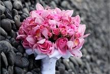 petals..