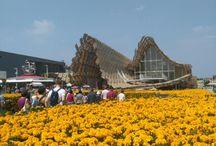 EXPO#Milan#China