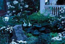 white -moon- garden