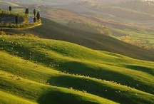 Discovery Tuscany