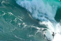 Sports / Surfing