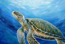 turtles and other sea creatures