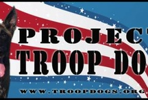 Support our troops / by Ruth Horstman
