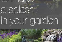 pond ideas in your garden
