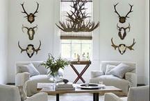Interiors~Living Rooms
