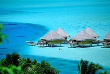 Dream Vacations / by Mikala Merkling