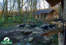 Zoo residence