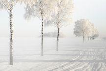 Winter ·