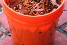 Jardinage et compost