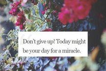 Nic nevzdavej!