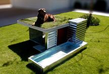dt kennel idea