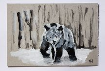 Ursus Arctos / #Ursus #Arctos #Grizzly #Bear #Jordi.NN