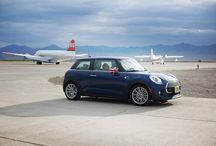 Beauty on the outside. Beast on the inside. - photo from miniusa