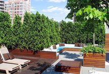 Rooftop garden / Live greener, create your view!