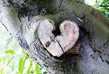 Hearts / by Lydia Billman