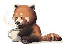 Röda pandor
