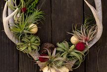 Nature: Bones with flower arrangement