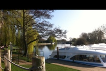 Benson @ Oxfordshire / by Umit H