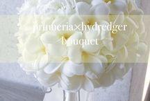 bridalflower
