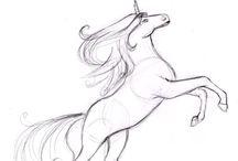 Unicorn draw