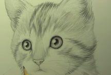 Katten tekening