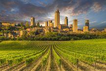 Grand tour tra le vigne d'Europa