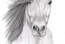 dibujos a lápiz de animales