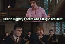 I HATE UMBRIDGE
