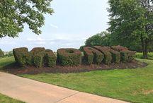 Virginia Oaks - Gainesville VA Real Estate