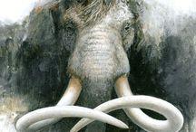 extinced mammals