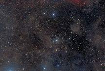 Cosmos / by tc dega