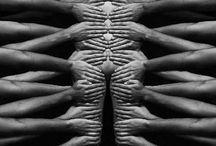 photography body