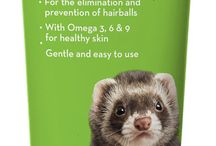 For the Ferrets / Everything you ever needed to know about caring for ferrets. Pins include product recommendations and other tips for ferrets of all ages.