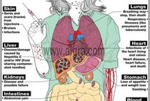 Drug Education Posters / Drug abuse prevention and education for high school students. Illustrations about the harmful effects of alcohol and drugs.  / by Health & Fitness Posters