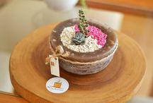 Minis jardins tendances / Jardins miniatures réalisés dans divers contenants de tous les jours. Facile à réaliser avec des plantes grasses ou des minis plantes. Un peu de gravier et de sable de mamikatou.com et voilà...