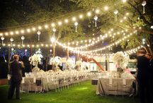 Wedding Ideas / by Linda Abraham