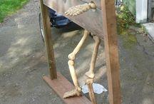 Skeletons  / by Pam Steele