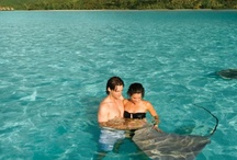 Moorea / Let us help you design your perfect itinerary. Our clients LOVE our excellent rates! Call us: 800.915.6996.