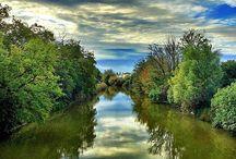 Nature: Po Delta Park