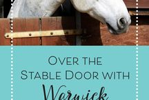 Over The Stable Door / equestrian, equestrianism, types of equestrian sports, horse riding history, horseback riding, horsemanship, horse trainers, confident rider