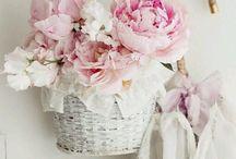 kukat, sisältää sisustus