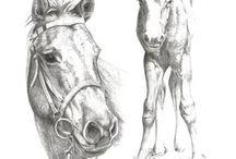 Horse Home Decor