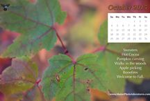 Desktop Calendars / Some free digital calendars to decorate your monitor each month.