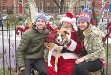 Santa Paws! / Recently Santa Paws paid a visit to the dog park to spread holiday cheer and treats alike. / by Philadelphia's Magic Gardens