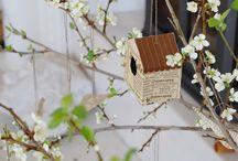 jaro / spring