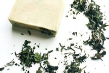 Tea Benefits and Articles
