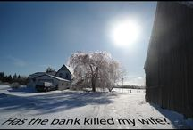 Has the Bank Killed My Wife