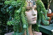 Plantas!!!