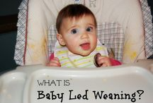 *baby led weaning* / Feeding babies real food from 6 months on… fun easy alternative to baby food!